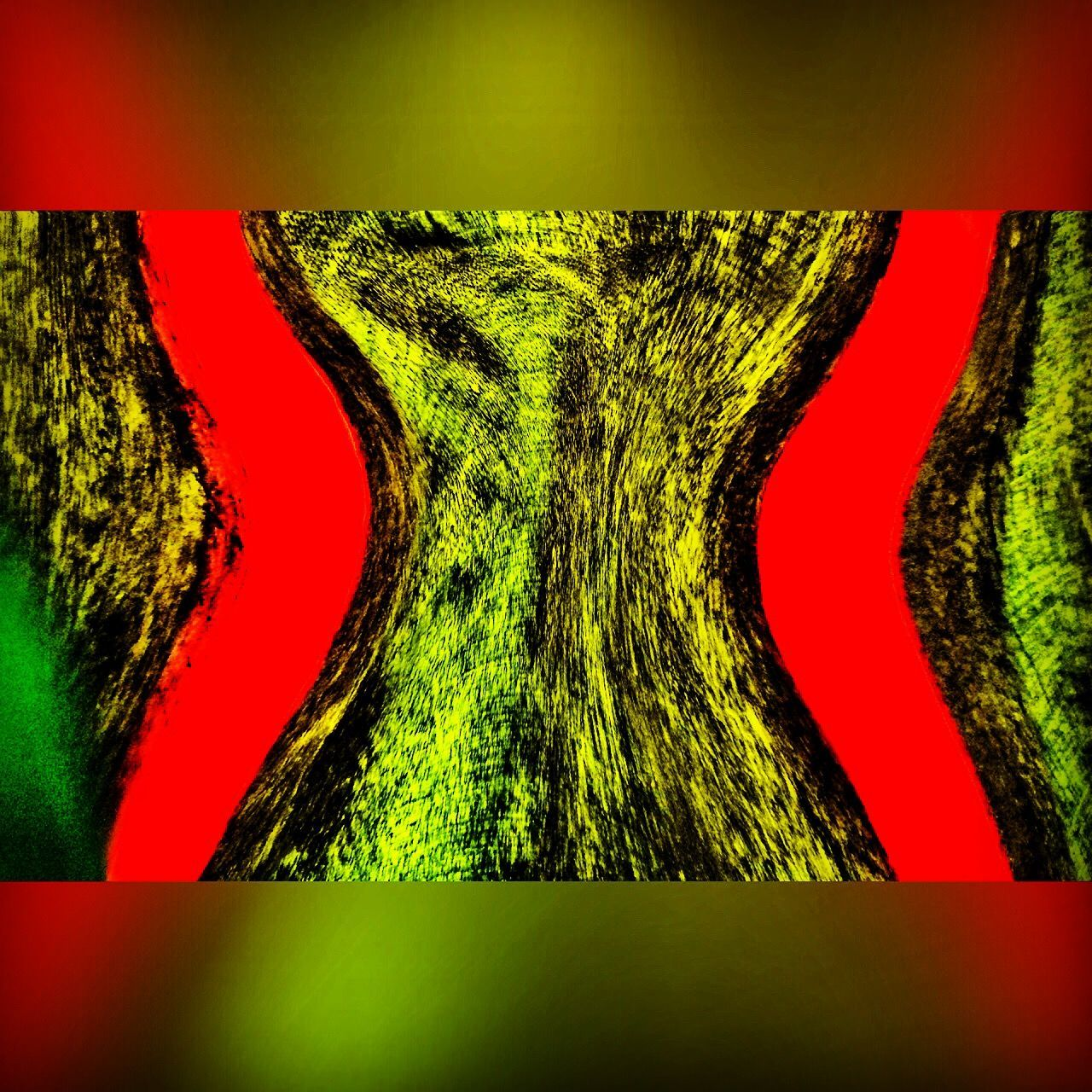 red, no people, green color, indoors, close-up, multi colored, day, nature