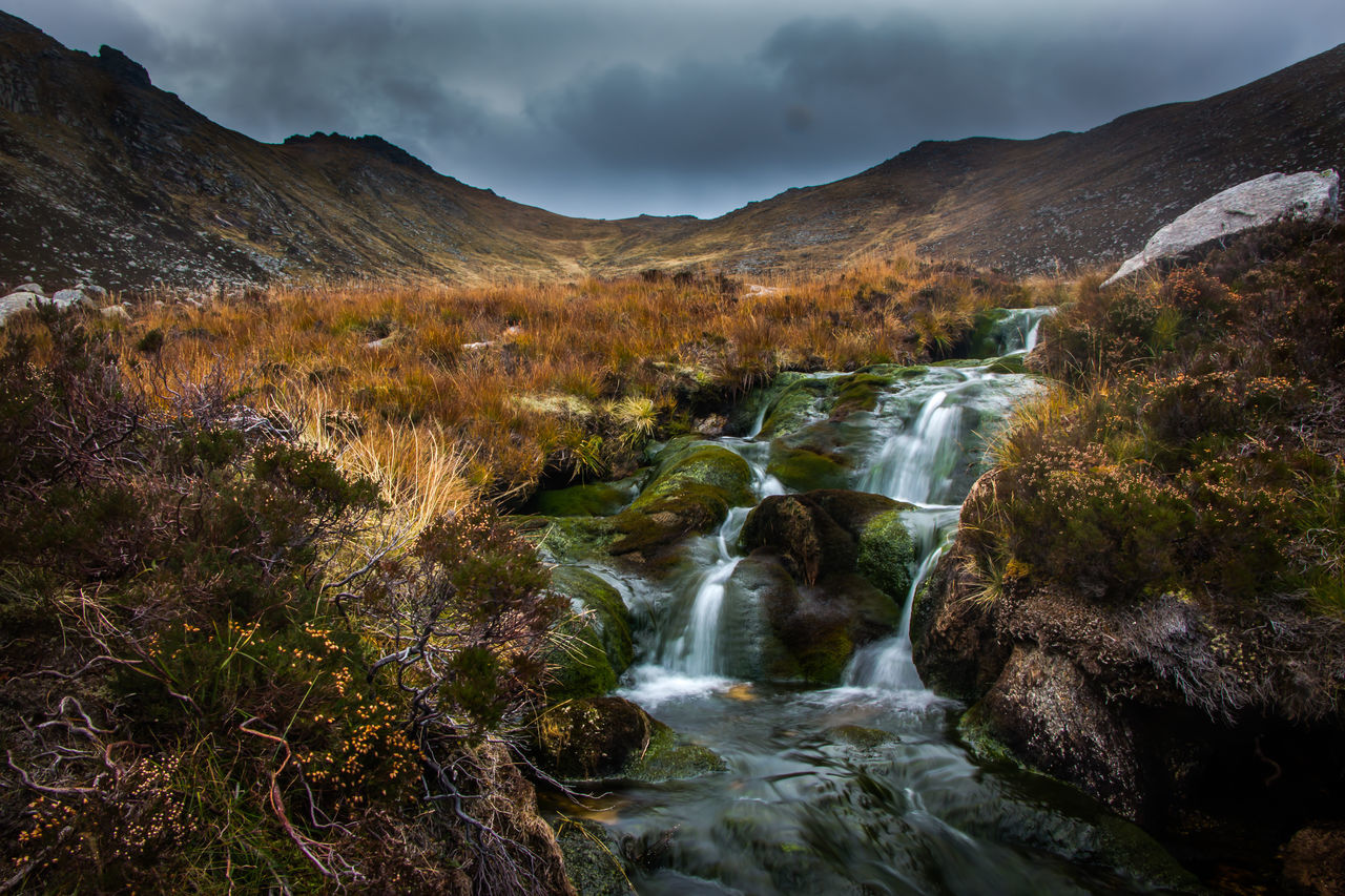 Landscape Nature Tree Hiking Beauty In Nature Forest Mountain Water Scenics Waterfall No People Stream - Flowing Water Outdoors Valley Scotland Arran