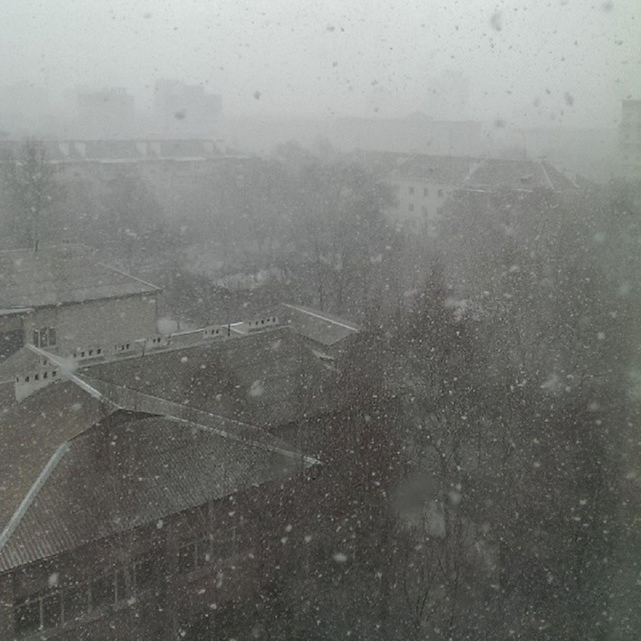 веснасошласума  снегопад  буря Snow Уссурийск