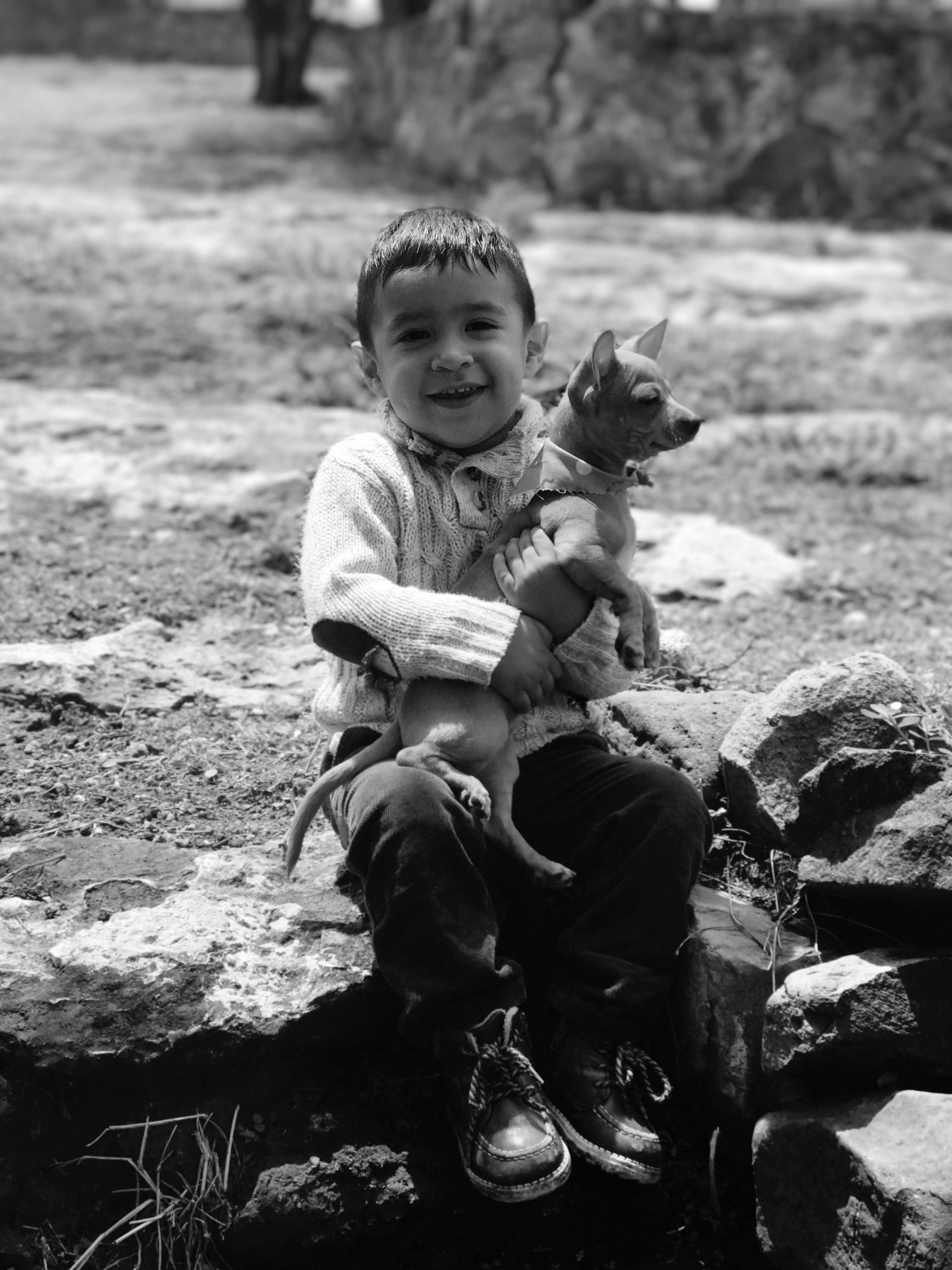 childhood, full length, real people, sitting, happiness, one person, smiling, looking at camera, cute, portrait, outdoors, one animal, front view, casual clothing, boys, animal themes, elementary age, day, field, lifestyles, leisure activity, mammal, pets, domestic animals, nature, young adult, people