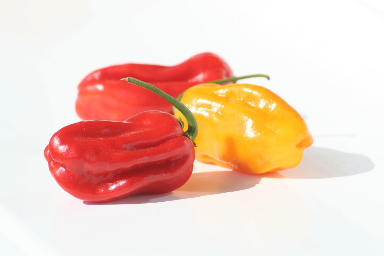 Bell Pepper Food Freshness Red Red Bell Pepper Studio Shot Vegetable White Background Yellow