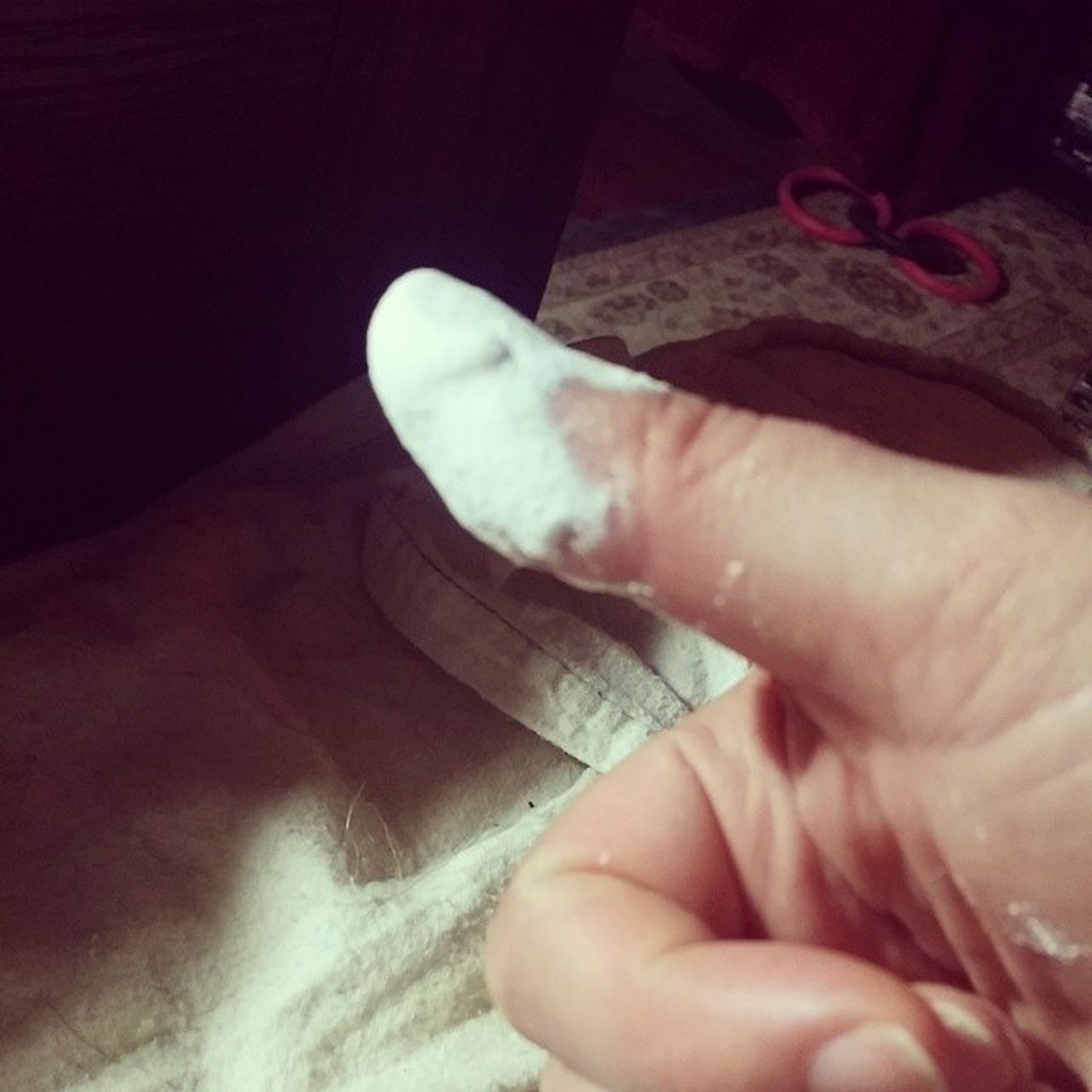 person, part of, indoors, human finger, cropped, holding, close-up, unrecognizable person, personal perspective, lifestyles, men, leisure activity, midsection, animal themes, white color