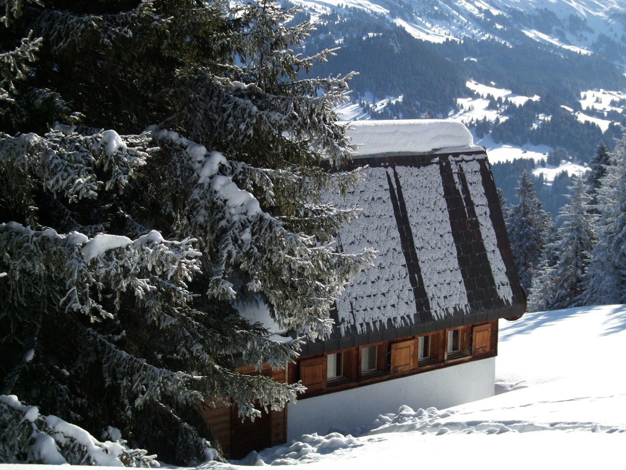 Beauty In Nature Chalet Cold Temperature Day Mountain Nature No People Outdoors Scenics Sky Snow Snowing Tree Winter