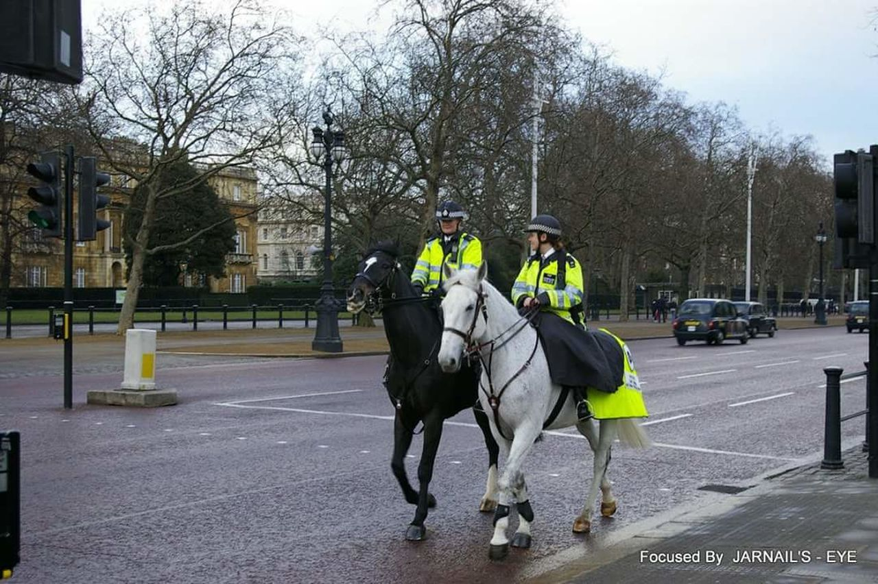 Londonlife police Enjoying Life horse Police At Work Horse Riding LONDON❤ Duty Women At Work