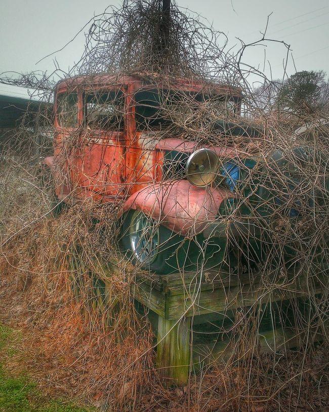 Vintage Cars Abandoned & Derelict Rural Scenes Rural America RuralExploration Rusty Rural Decay AMPt - Abandon Abandoned HotRod EyeEm Best Shots Eyemphotography Gettyimages Here Belongs To Me