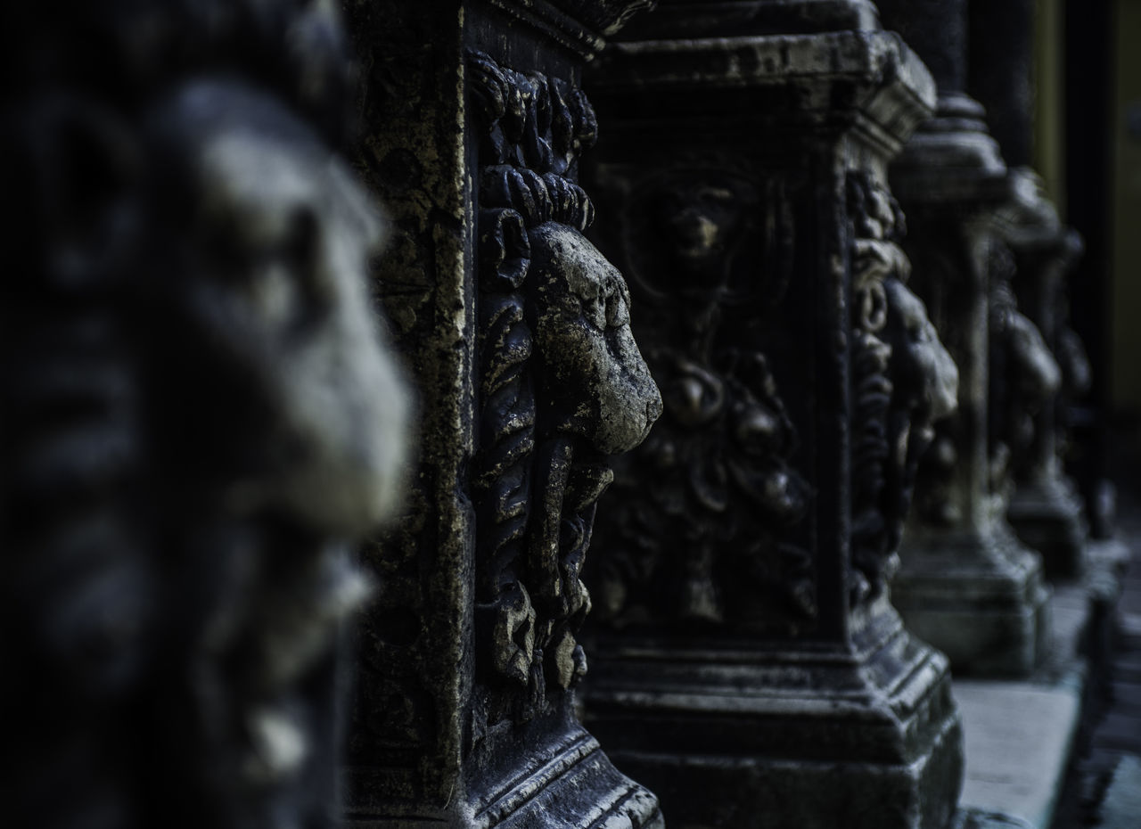 2016 Architectural Detail Architecture Bas-relief Bas-reliefs Building Exterior Built Structure Close-up Collumns D600 Day History Lion Lions Lviv Night No People Old Buildings Outdoor Ukraine The Architect - 2017 EyeEm Awards