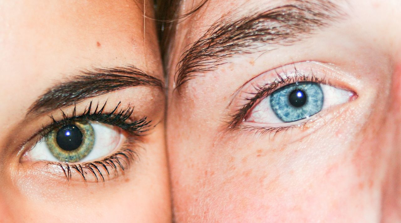 Beautiful stock photos of life, Blue Eyes, Close-Up, Contrasts, Detail