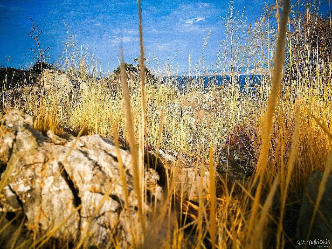 """""""Μια ήσυχη φωτογραφία με φόντο το μπλε του ουρανού"""" First Eyeem Photo Crete Agiosnikolaos Perfectview Secretplace Bluesky Niceplace Everythingisyellow Rocks Greece🇬🇷 The Great Outdoors - 2017 EyeEm Awards"""