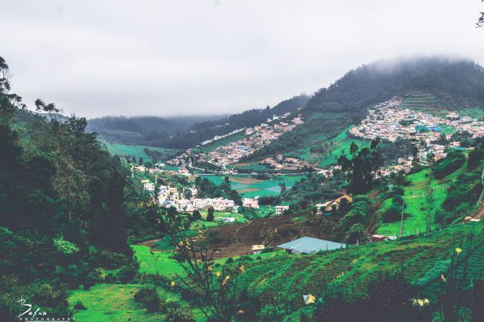 Ooty. Tamil nadu😇 Hanging Out Taking Photos Misty Day Check This Out Misty Morning Travel Photography Travel Destinations India Indian Ooty Ootydiaries OotY_hiLLz Nature Nature Photography Nature_collection Naturelovers