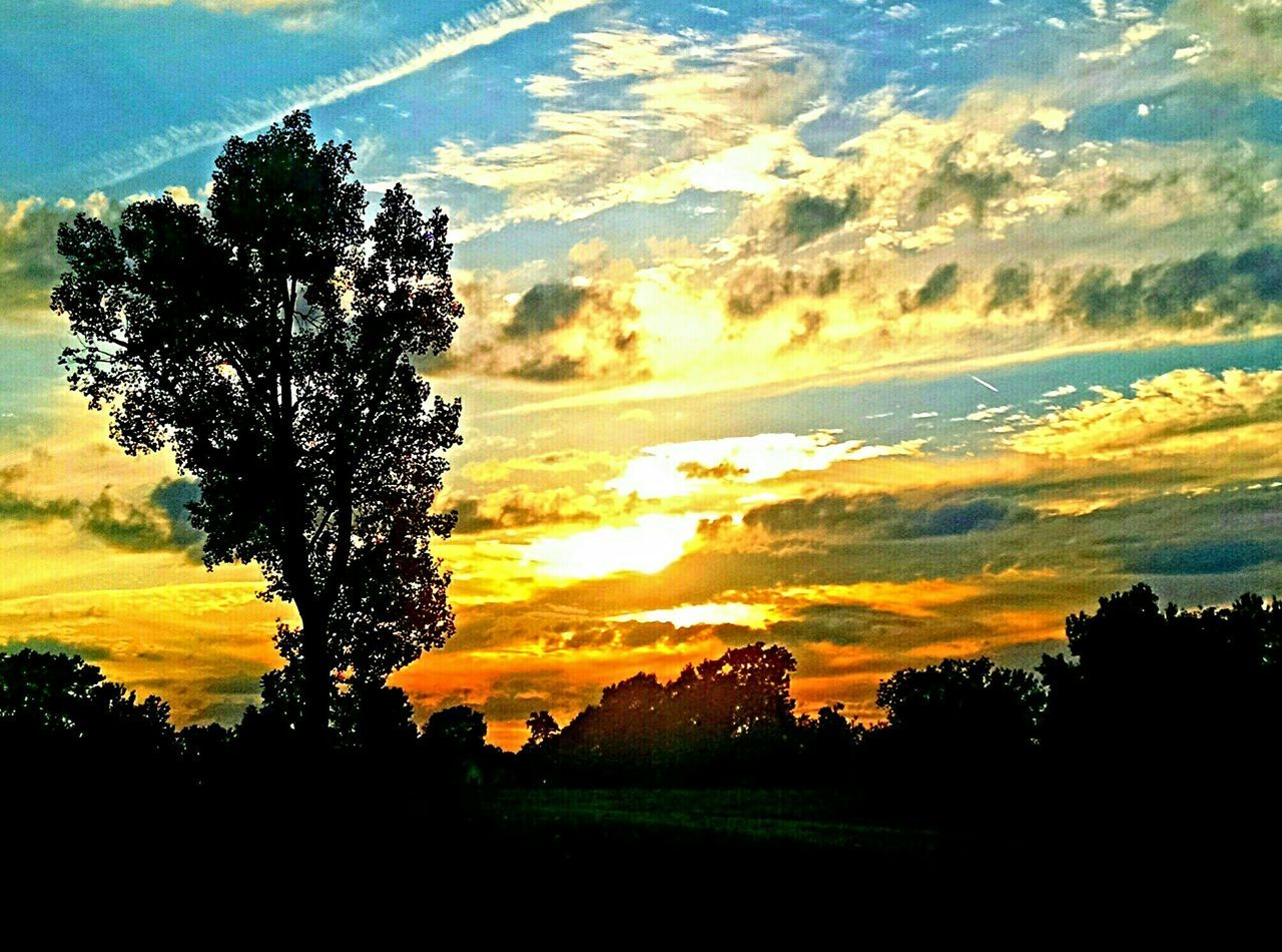 sunset, tree, nature, silhouette, beauty in nature, sky, scenics, tranquility, tranquil scene, no people, landscape, outdoors