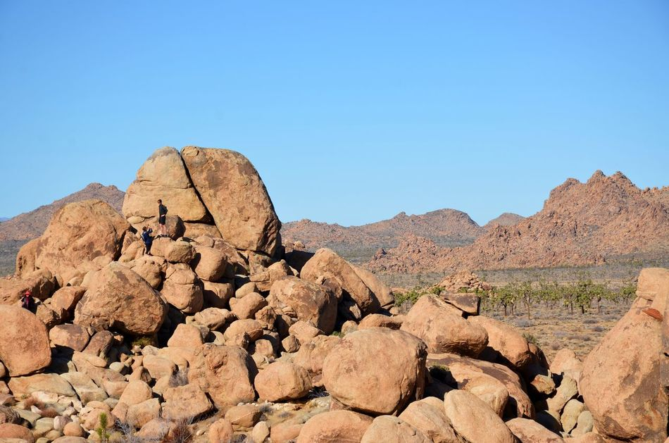 Adventure Beauty In Nature Boulders California Clear Sky Climbing Desert Hiking Joshua Tree National Park Miniscule Monoliths Mountain Nature Outdoors Rock Climbing Sky