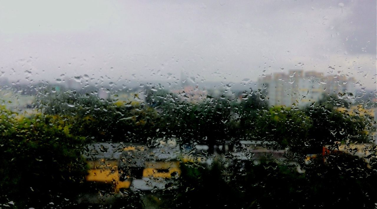 Rainy Day Rain On Glass Rain On The WindowRainy Days Raindrops Rainy Days☔ Rain On Window Rain Drops Eyeemphotography Eye4photography  Nature_collection Pune Puneinstagrammers Pune City Puneclickarts Green Green Green!