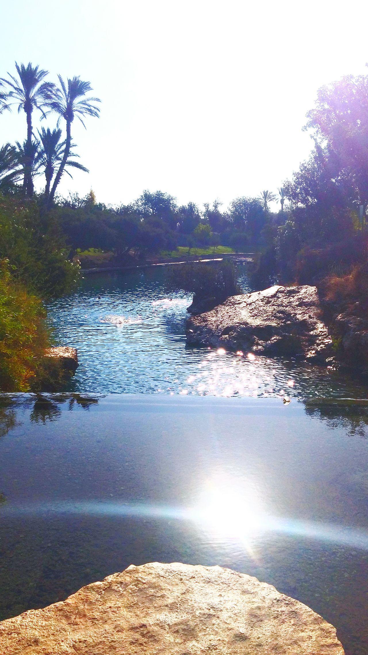 Nature Water Summer Springs גן השלושה بيسان الساخنة