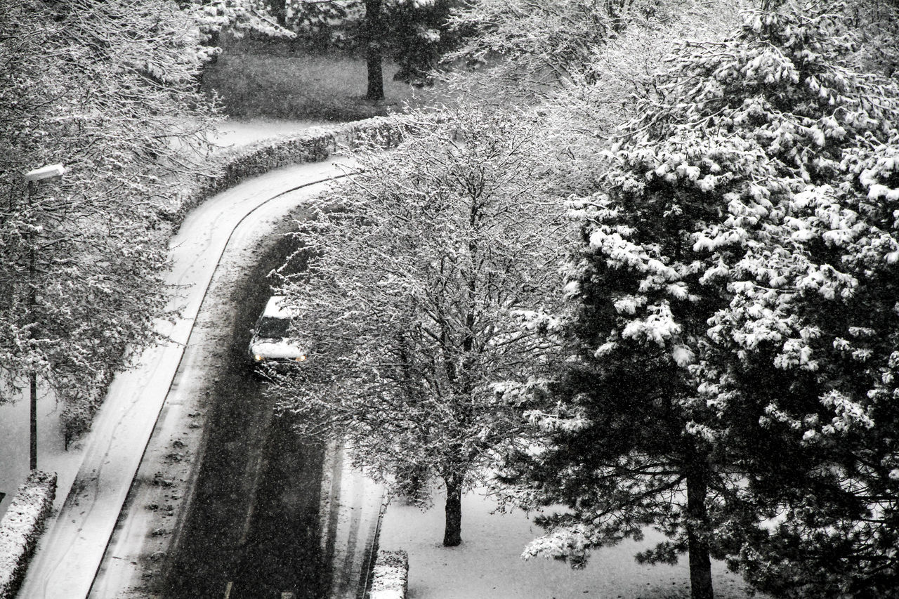 High Angle View Of Car On Road Amidst Frozen Trees During Winter
