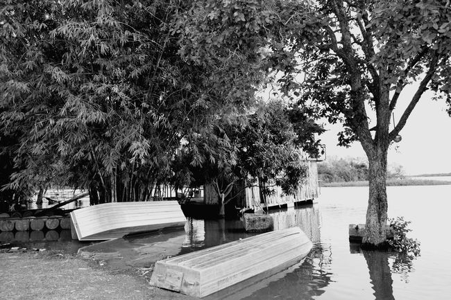 Rioaraguaia Araguaia River Collection River View Boat House Blackandwhite Black And White Black & White Hollyday
