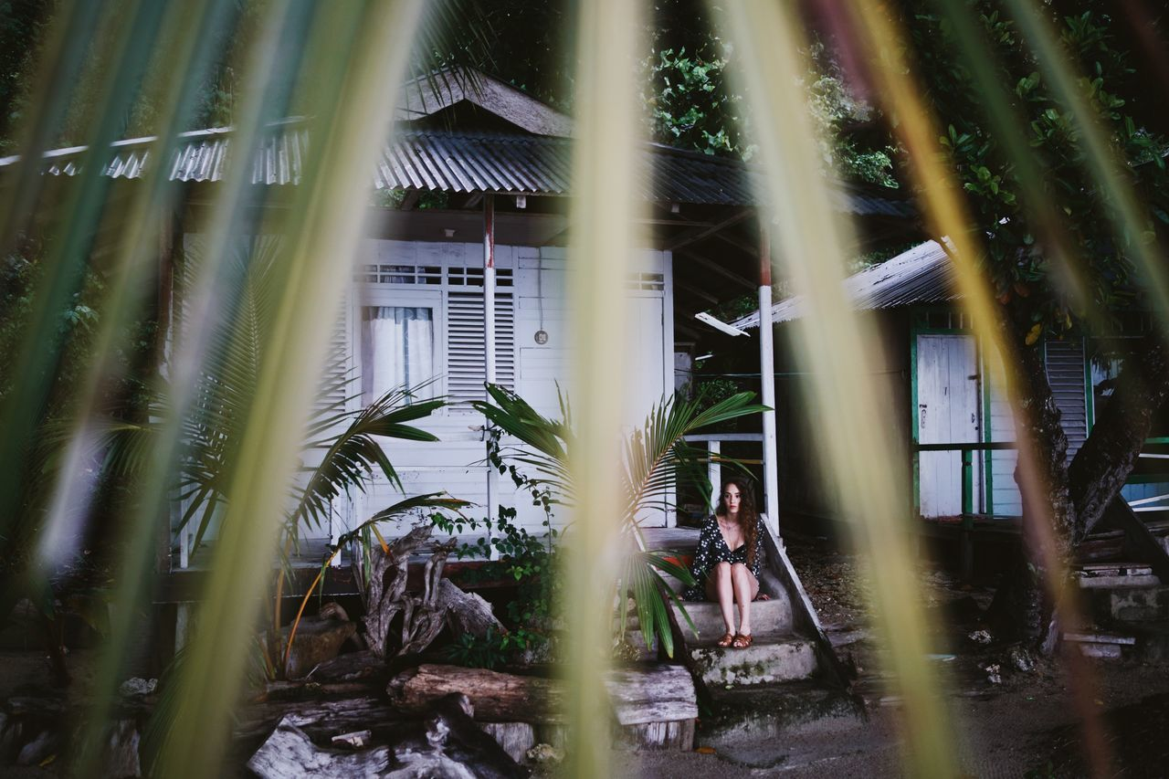 ASIA Beach Huts Bungalow Focus On Background Girl Hotel INDONESIA Leaves Maluku  Moluccas Morotaiisland Palm Tree Paradise Travel Tree View Through The Trees White Building