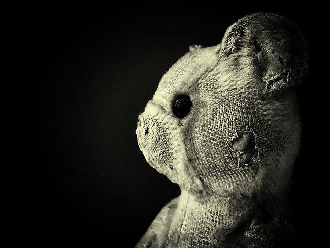Teddybear MyLove❤ Shootermag Toy Photography Photographic Memory Memories