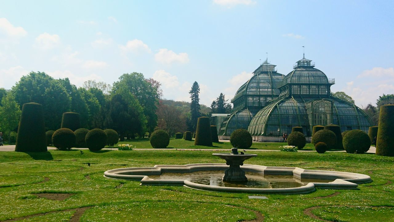 Palmenhaus Palmenhaus Palmenhaus Schönbrunn Wien Vienna Botanical Garden Architecture Park Park View Grass Sky Day No People Tree Landscape History Architecture Gotzphoto EyeEmNewHere EyeEm Selects Breathing Space Lost In The Landscape