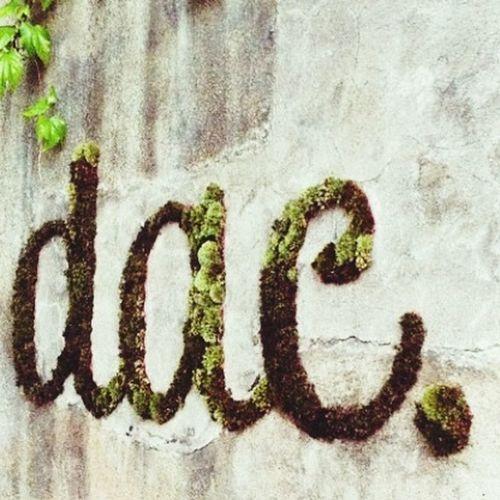 Dac. Street Art Sun ☀ Wall
