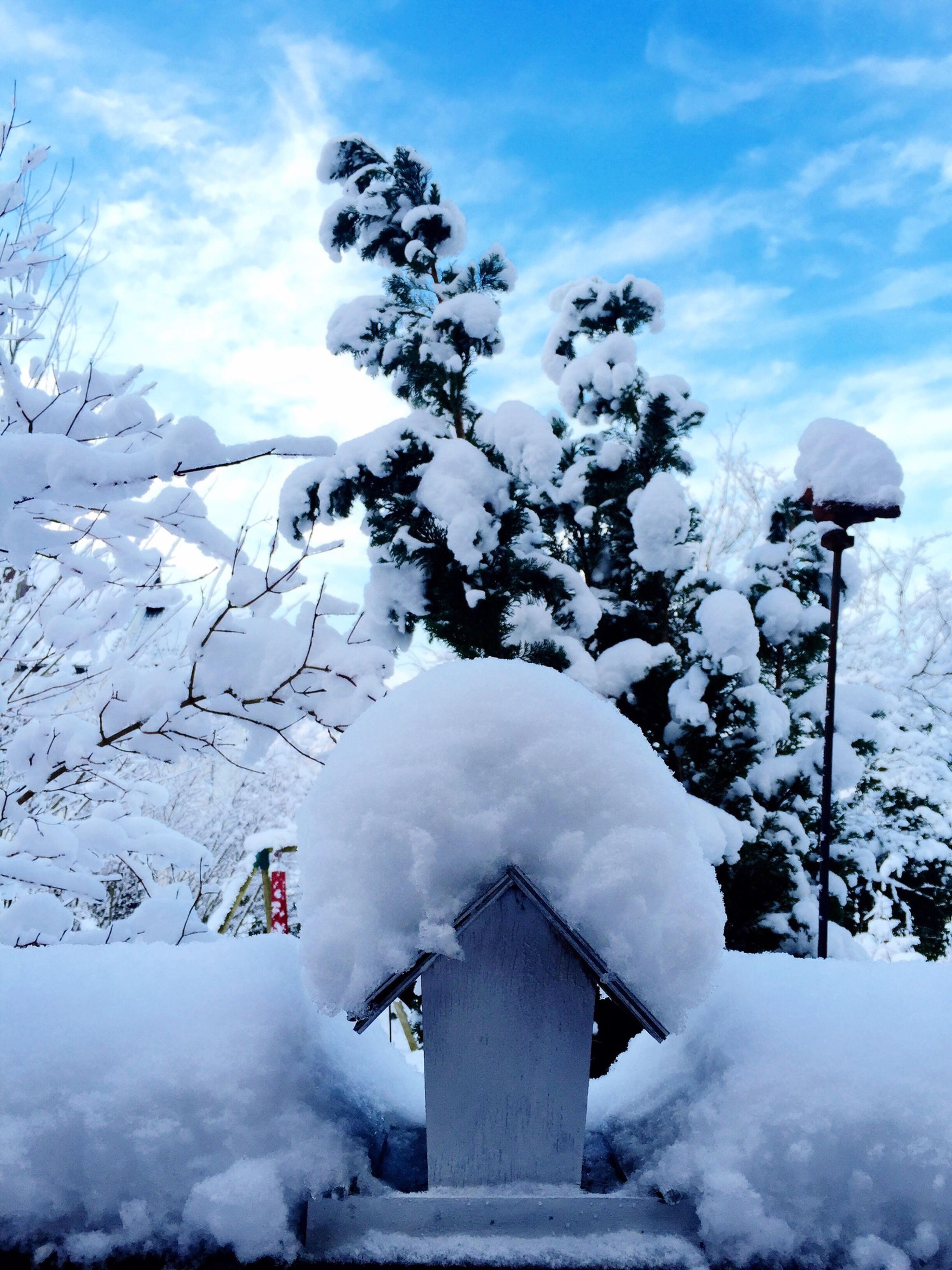 snow, winter, cold temperature, season, weather, covering, sky, white color, frozen, covered, cloud - sky, nature, snowcapped mountain, tree, mountain, day, beauty in nature, low angle view, landscape, snow covered