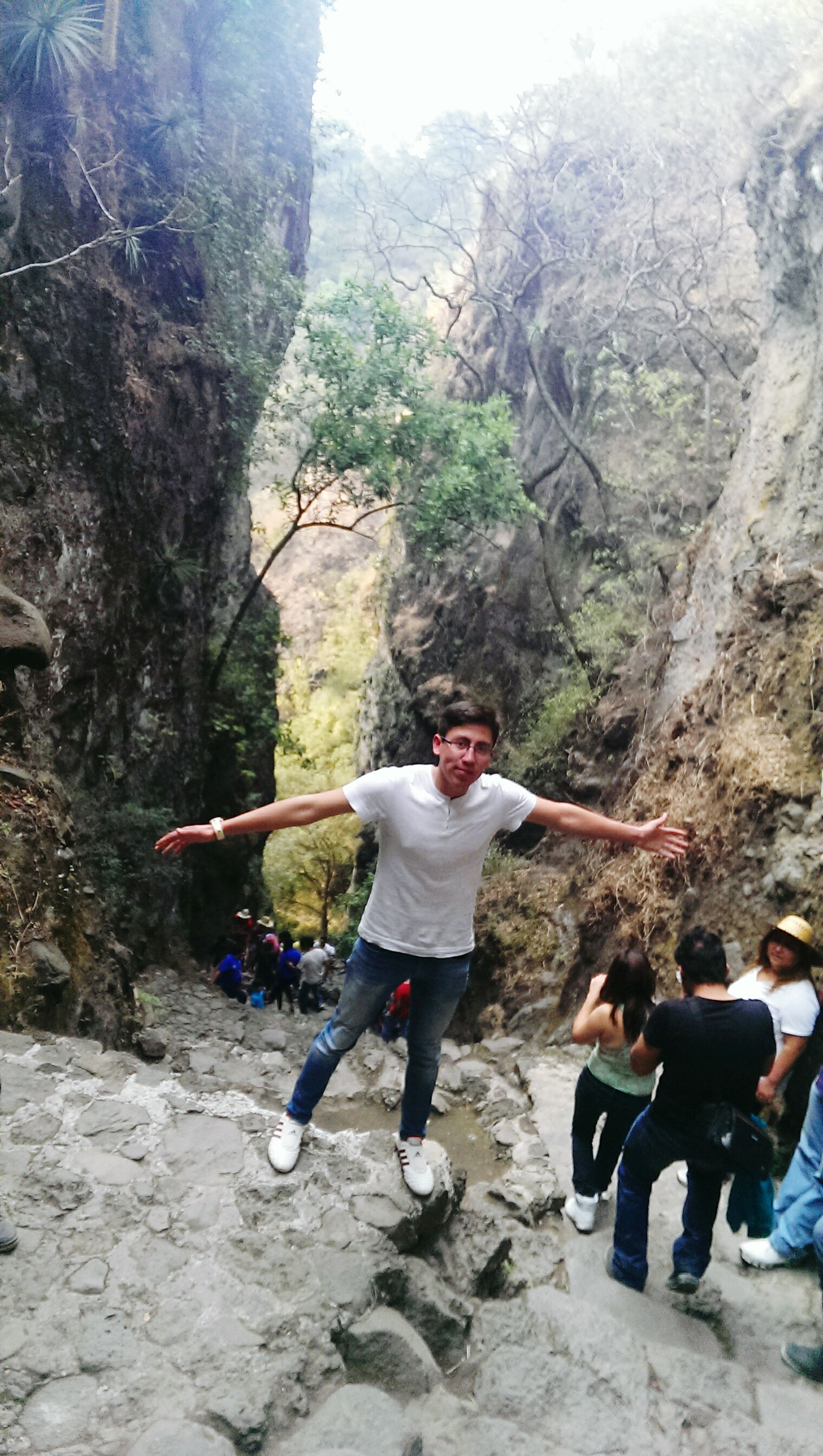 lifestyles, leisure activity, casual clothing, full length, tree, men, person, tourist, travel, rock - object, day, rear view, standing, vacations, tourism, outdoors, nature, walking