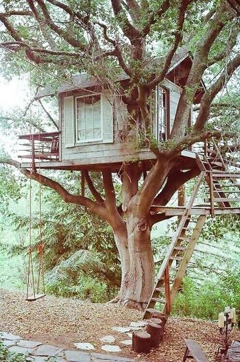 Wooden House Nature Likeadream Peace