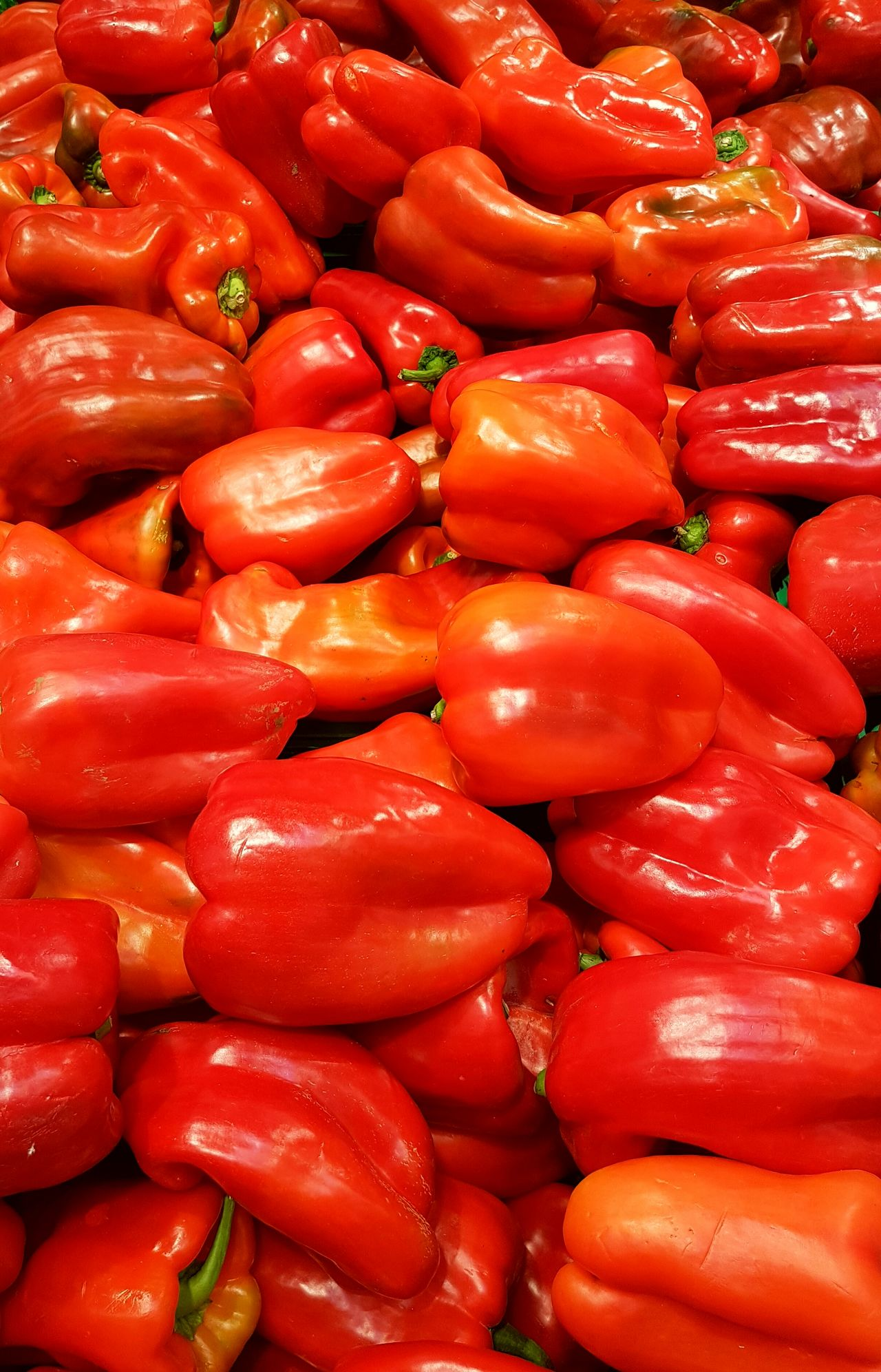 Shopping colours Full Frame Freshness Red Backgrounds Healthy Eating Vegetable Market Abundance Food And Drink Retail  For Sale Food Bell Pepper Red Bell Pepper Spice Red Chili Pepper No People Chili Pepper Close-up Farmer Market