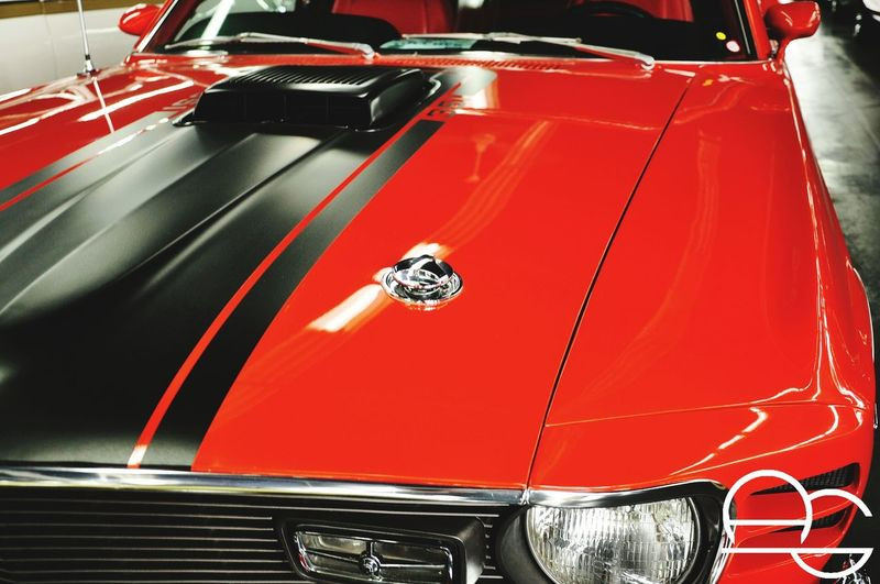 Orange :D Cars Sportcars Car Carphotography Photography Mustang Orange Color Stripes Polished Shinycar Shiny First Eyeem Photo