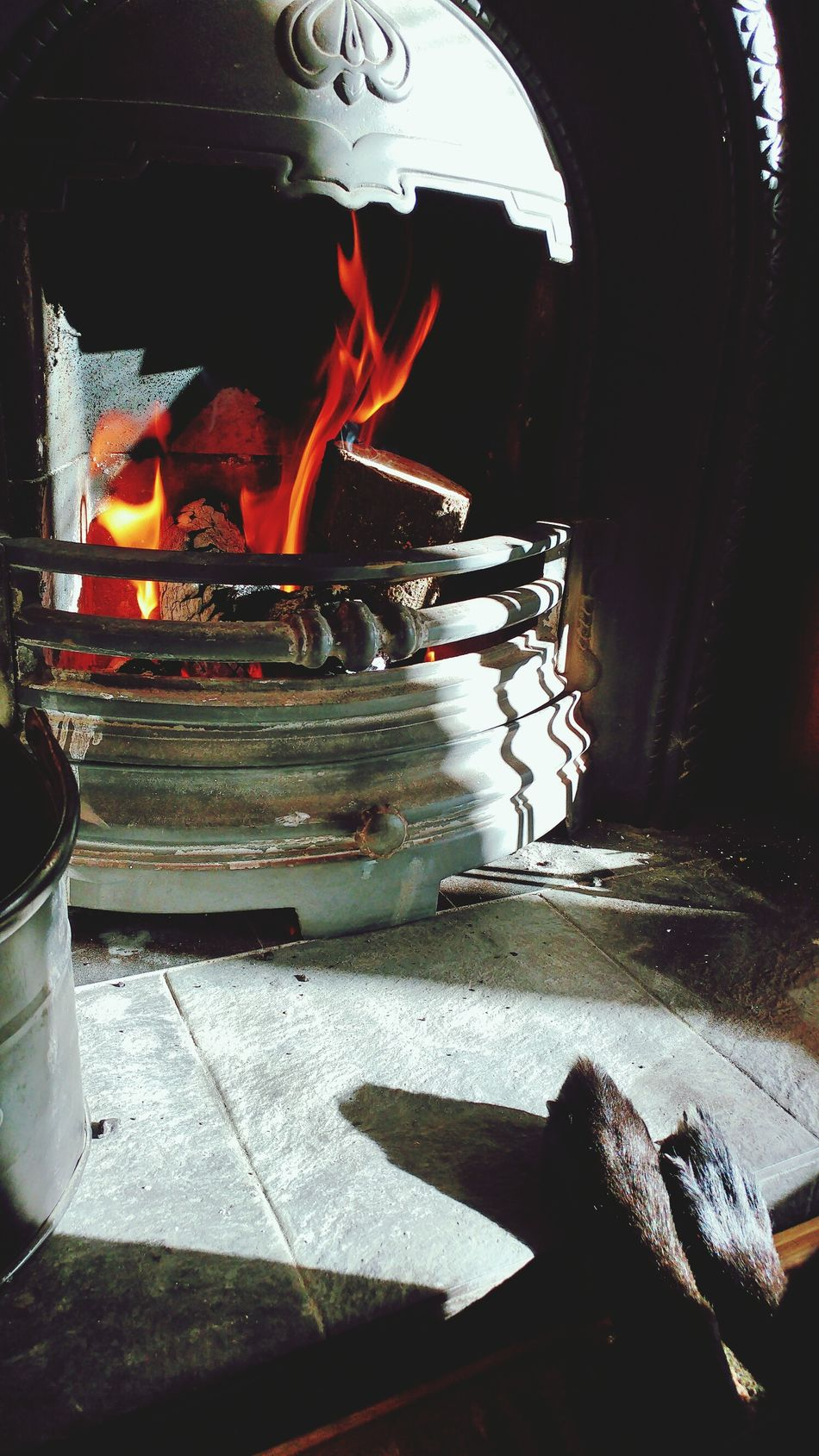 Heat - Temperature No People Close-up Indoors  Fire Fireplace Paws Dog Feet Relaxing Relaxing Moments Sunday Lazysunday