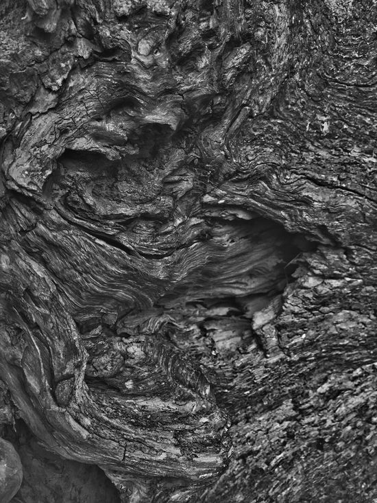 Abstract Nature Textured  Full Frame Backgrounds Pattern Nature Close-up Tree Trunk Abstract Tree Outdoors Knotted Wood Shapes In Nature  Beauty In Nature Natural Collages Layers And Textures Driftwood Natural Condition Shapes And Patterns  Abstractions Patterns In Nature Black And White Weathered Perspective View