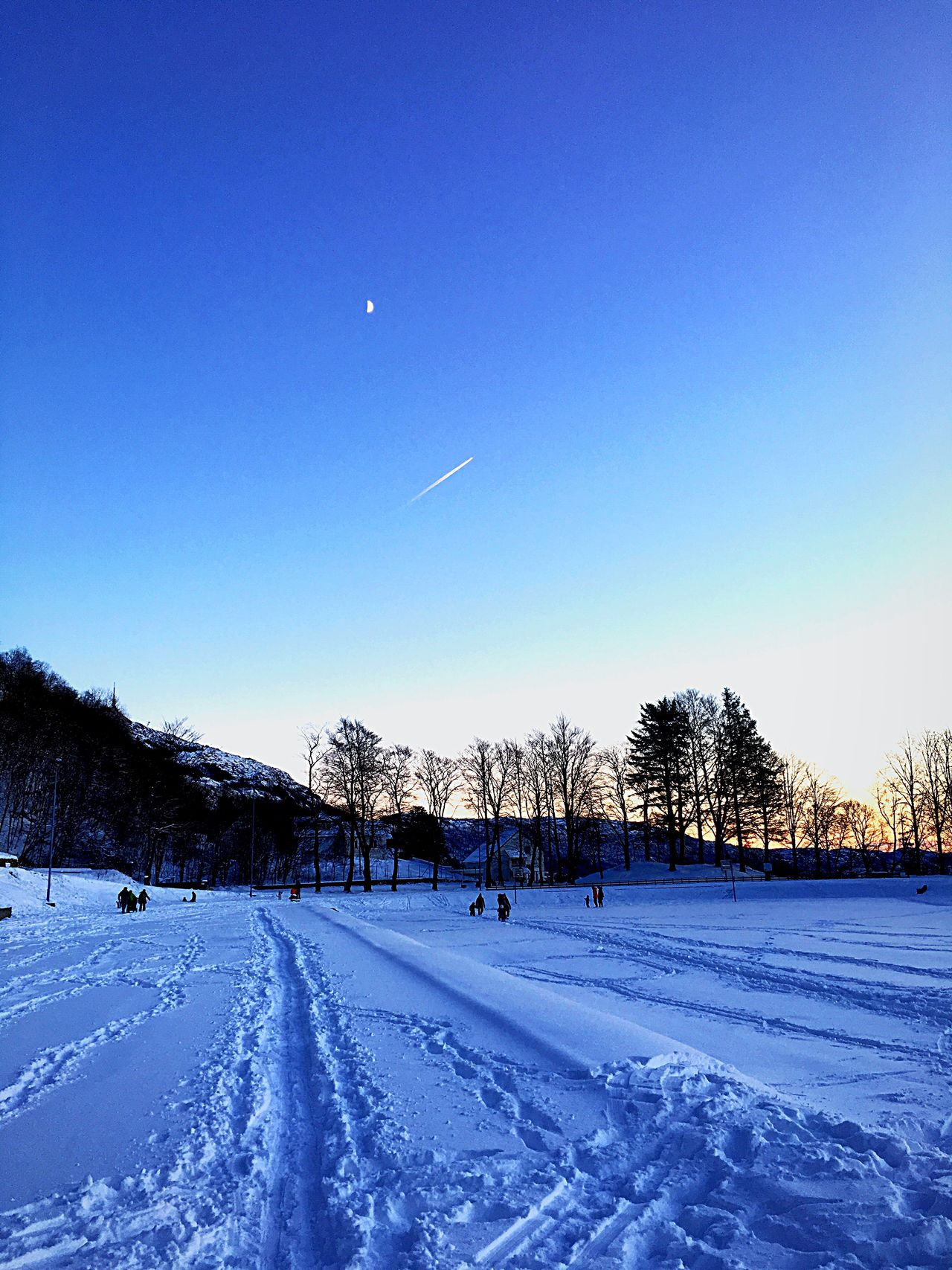 Winter Snow Cold Temperature Season  Blue Clear Sky Sky Outdoors Moon Plain Airplane Tree Beauty In Nature Mountain Snow Covered Nature First Eyeem Photo