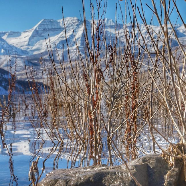 Nice view Snow Nature Outdoors Winter Cold Temperature Day No People Beauty In Nature Sky Landscape Scenics Close-up Water Trees Cloud - Sky Mountain Landscape Mountain Hiking Deer Creek Reservoir Beauty In Nature Wet Beach Reflection Sony A5000 Clouds And Sky Winter EyeEmNewHere
