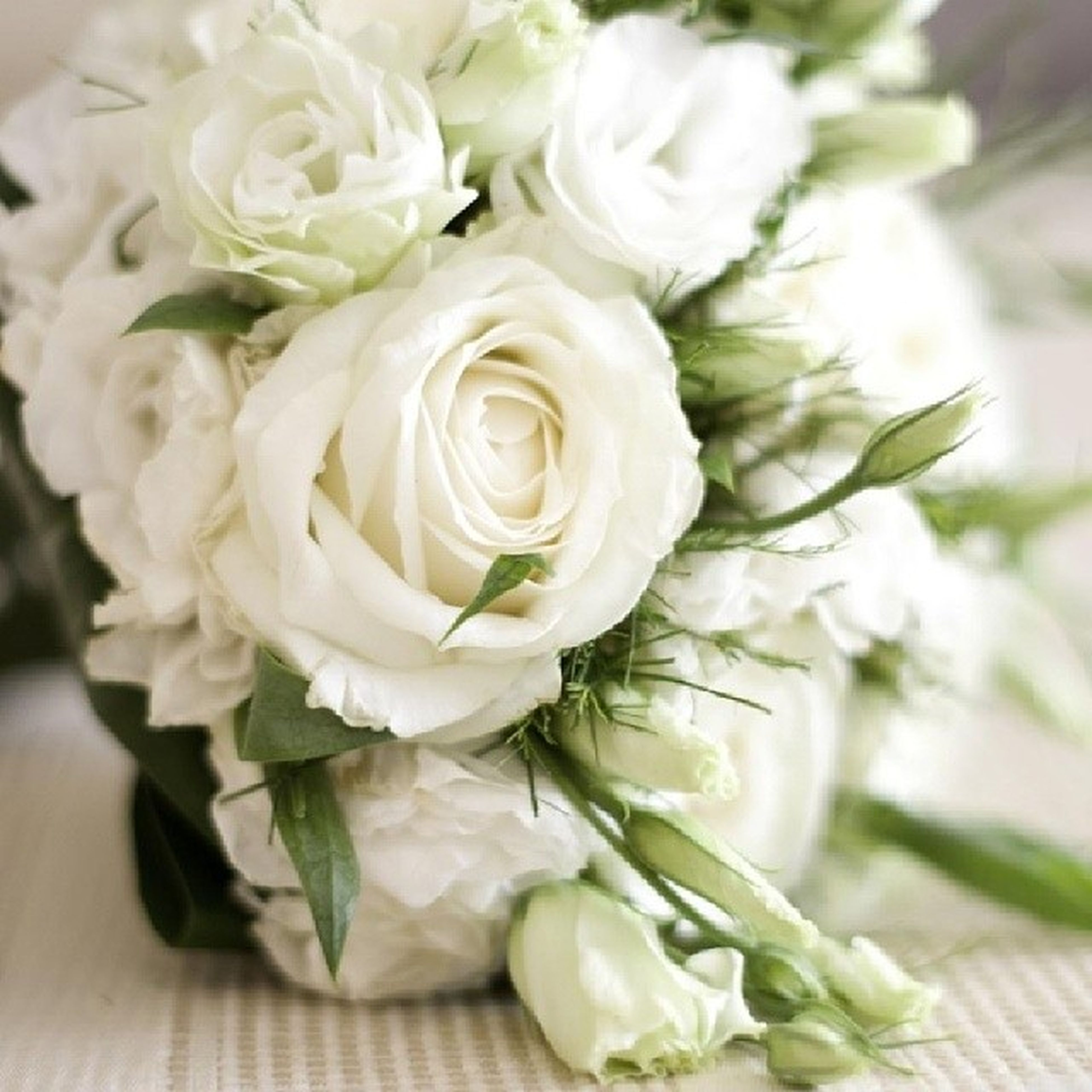 flower, freshness, fragility, petal, flower head, beauty in nature, growth, white color, close-up, rose - flower, nature, bunch of flowers, plant, indoors, blooming, focus on foreground, blossom, bouquet, leaf, high angle view