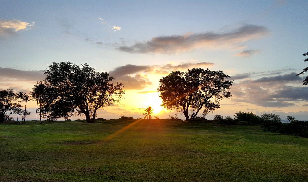 Sunset Maui Kihei, Maui Sunlight Tree Landscape Beauty In Nature Sun Scenics No People Nature Hawaiian Hawaii Island Travel Vacations The Great Outdoors - 2017 EyeEm Awards