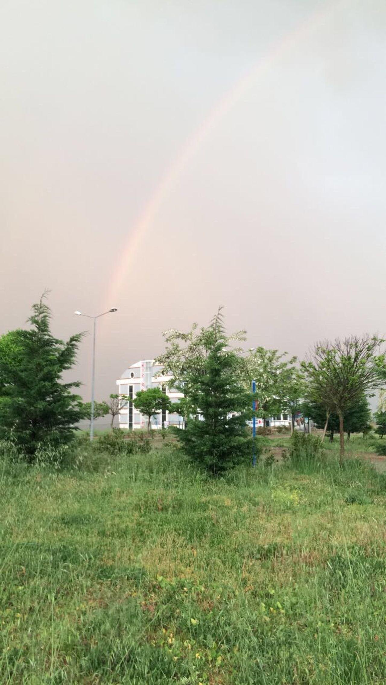 Rainbow Sky Clouds And Sky Turkey MyUniversity University RainyDay No People Grass Outdoors Green Tree Beauty In Nature EyeEm Nature Lover EyeEm EyeEm Gallery Scenics Irrigation Equipment