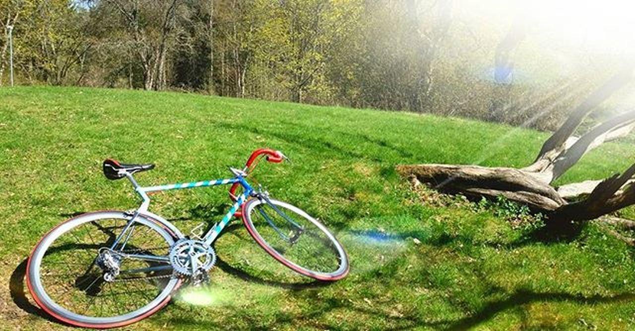 Hiltenbrand by Ganolo relalalaxing 😊 Hiltenbrand Ganolo Campagnolo Campa Oldschool Luggedsteel 70s Velo Bici Fahrrad Govaxjo Växjöhatecyclist Växjö  Växjö - Europas sämsta cykelstad 😠