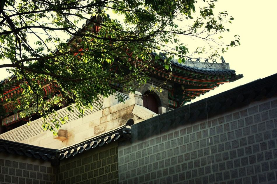 In 2014 Architecture I love korean traditional architecture. It is so beautiful, isn't it?