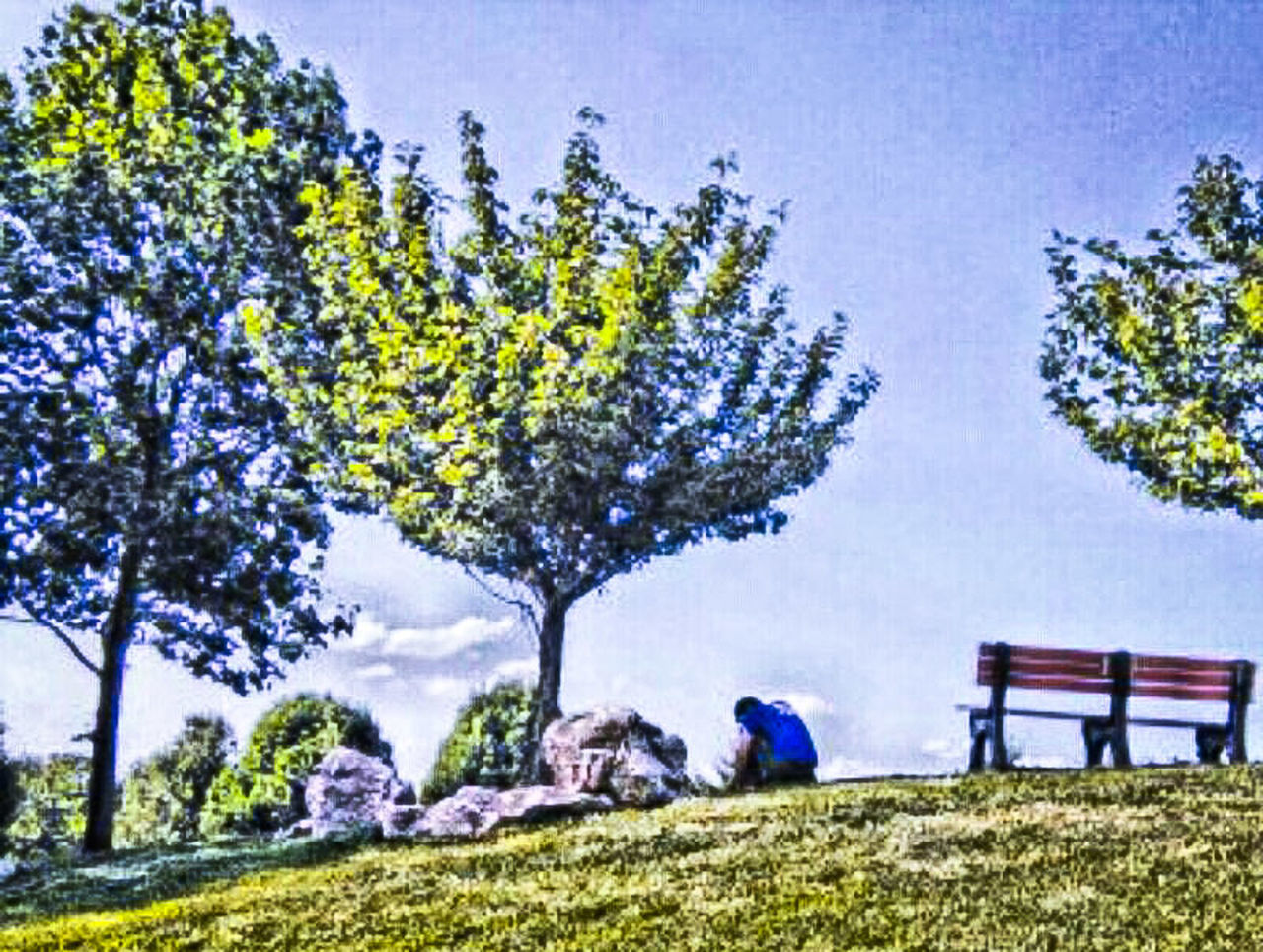Lonely young man..lonely bench..surrounded by abundance, life & beauty.. Eyeem Trending Popular Showcase July TRENDING  EyeEm USA  Landscape Fresh On Eyeem  New On Eyeem New On Market EyeEm Gallery Market Bestsellers June 2016 EyeEm Nature Lover Hdr Collections HDR Hdr Photography EyeEm Best Shots - Nature God's Creation God's Art Landscapes Best Selling Eyeem Market Park Bench Man Street Photography EyeEm Week