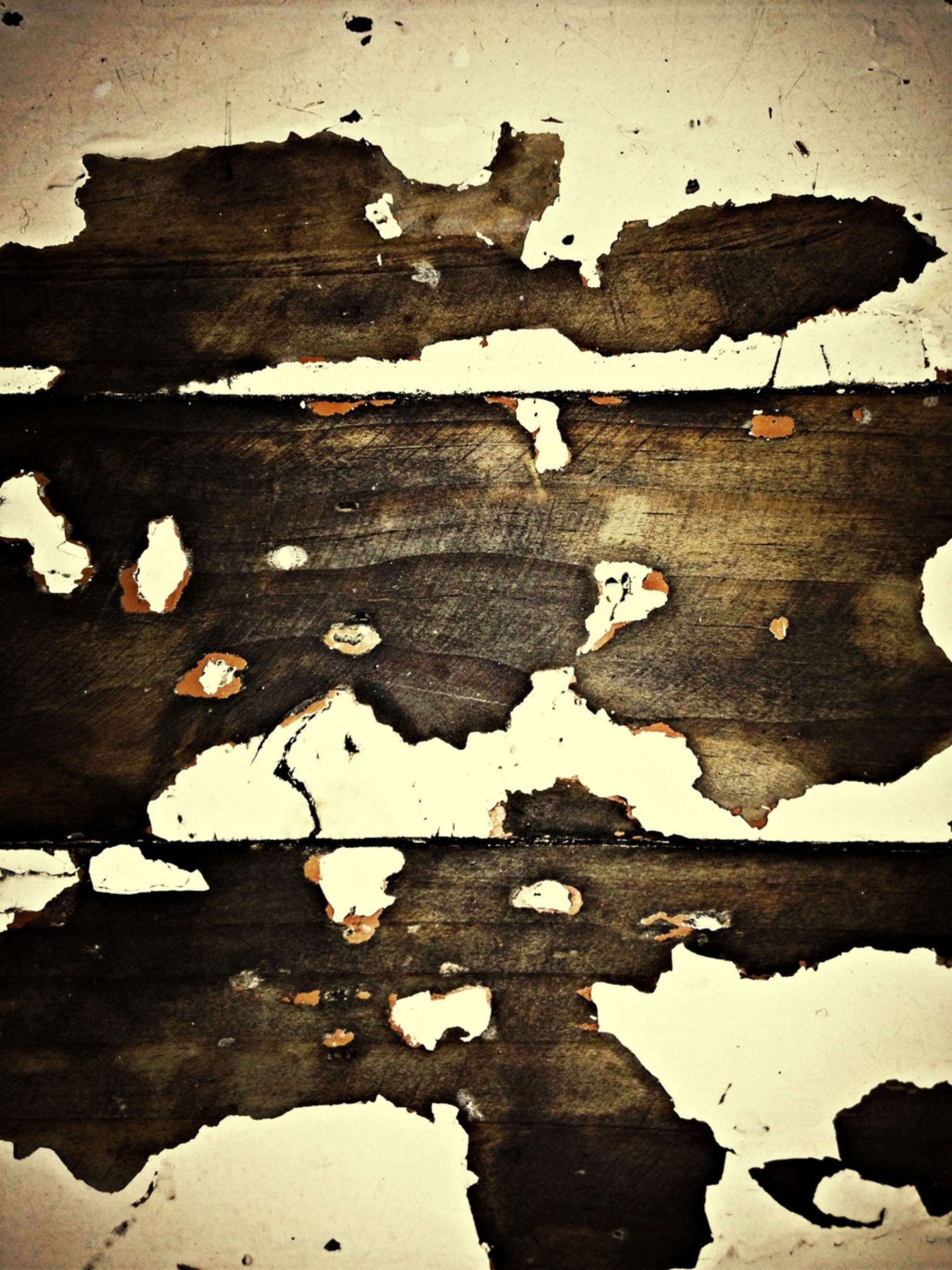 wood - material, high angle view, leaf, weathered, damaged, water, reflection, abandoned, outdoors, built structure, nature, deterioration, day, no people, puddle, old, close-up, wooden, wood, architecture