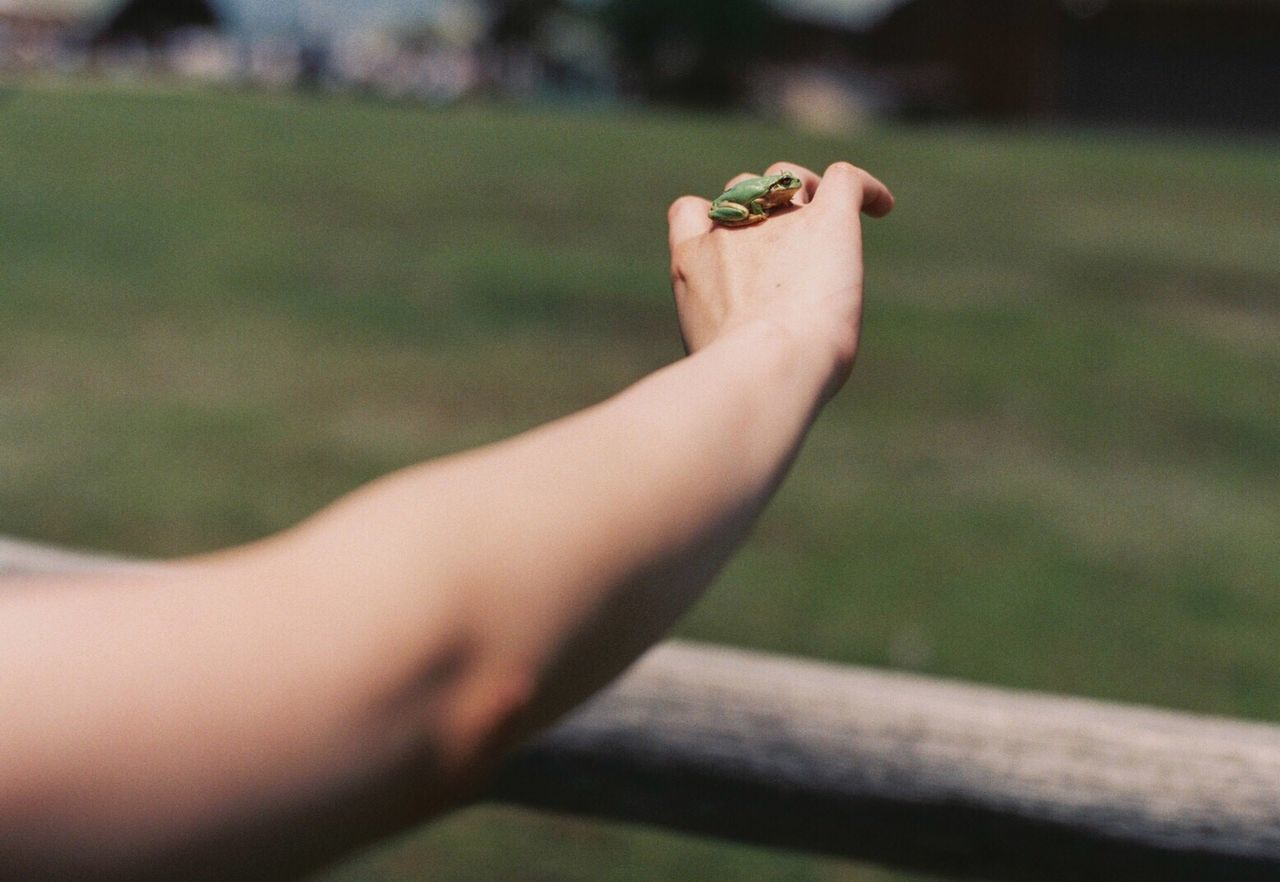 Film Filmisnotdead Human Hand Film Photography 35mm Film Filmcamera