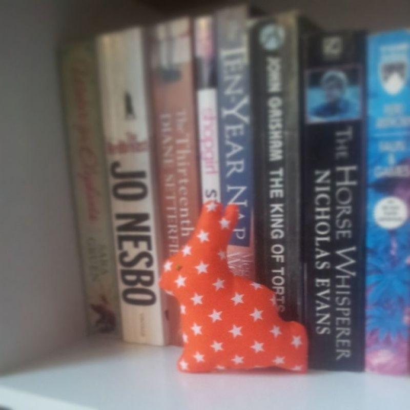 Little rabit. Dachita Craft Cute