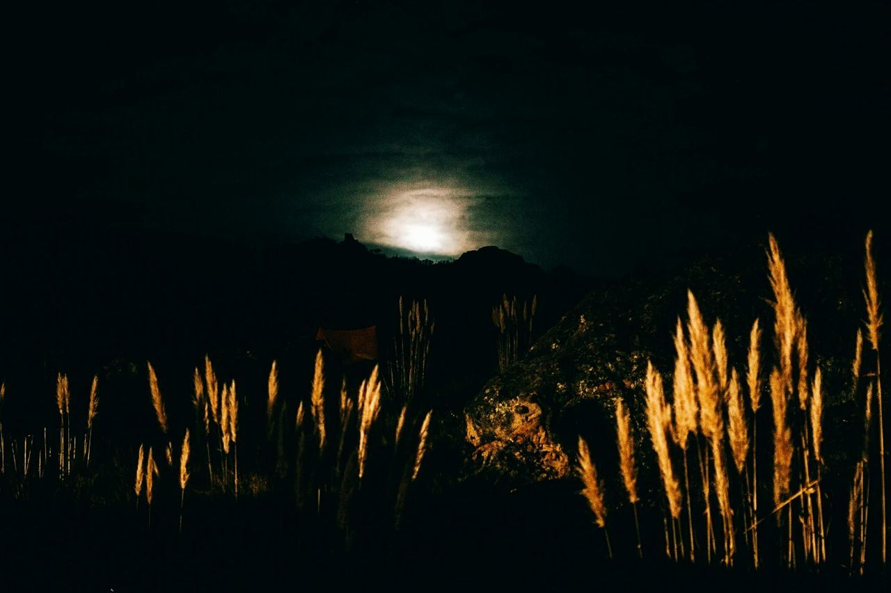 night, illuminated, dark, nature, outdoors, no people, silhouette, landscape, beauty in nature, sky