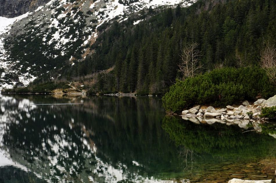 Morskie oko lake view in Poland Reflection Nature Water Tree Outdoors Beauty In Nature Lake Tranquility Landscape Travel Destinations Tranquility Morskieoko Poland Travel Scenics Nature Art Is Everywhere