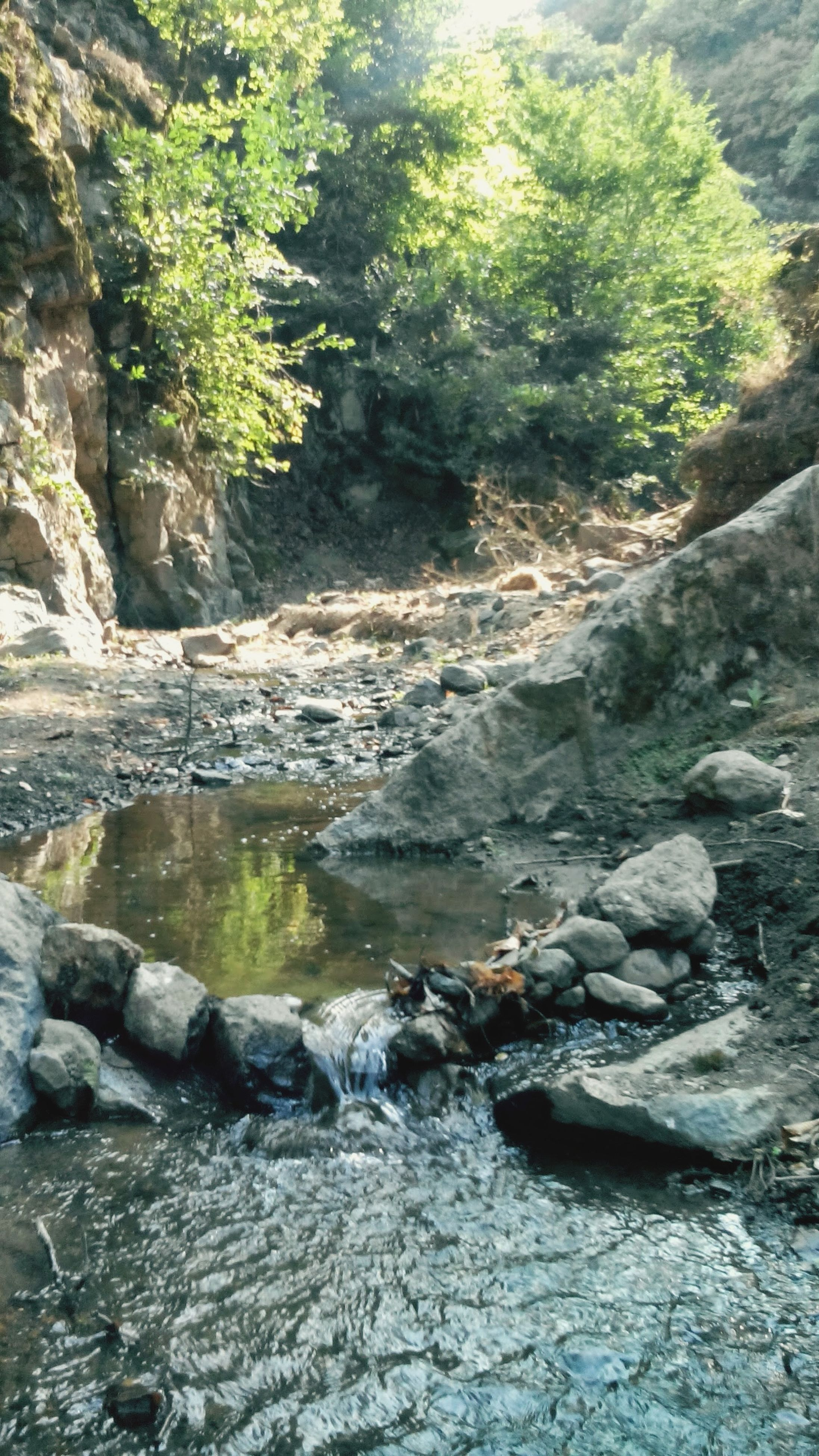 water, rock - object, rock formation, nature, beauty in nature, scenics, tree, tranquility, rock, tranquil scene, stream, river, forest, flowing water, flowing, stone, stone - object, day, outdoors, waterfront