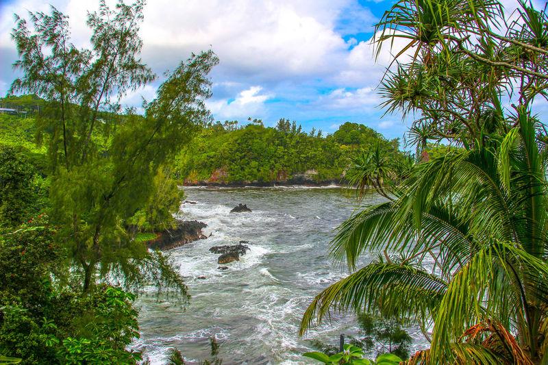 Akaka falls, Hilo, Hawaii, big island Akaka Falls Bigisland Bigislandhawaii Fall Falls Green Landscape Landscape_Collection Landscape_photography Landscape #Nature #photography Landscape_photography Landscapes Sky And Clouds Sky