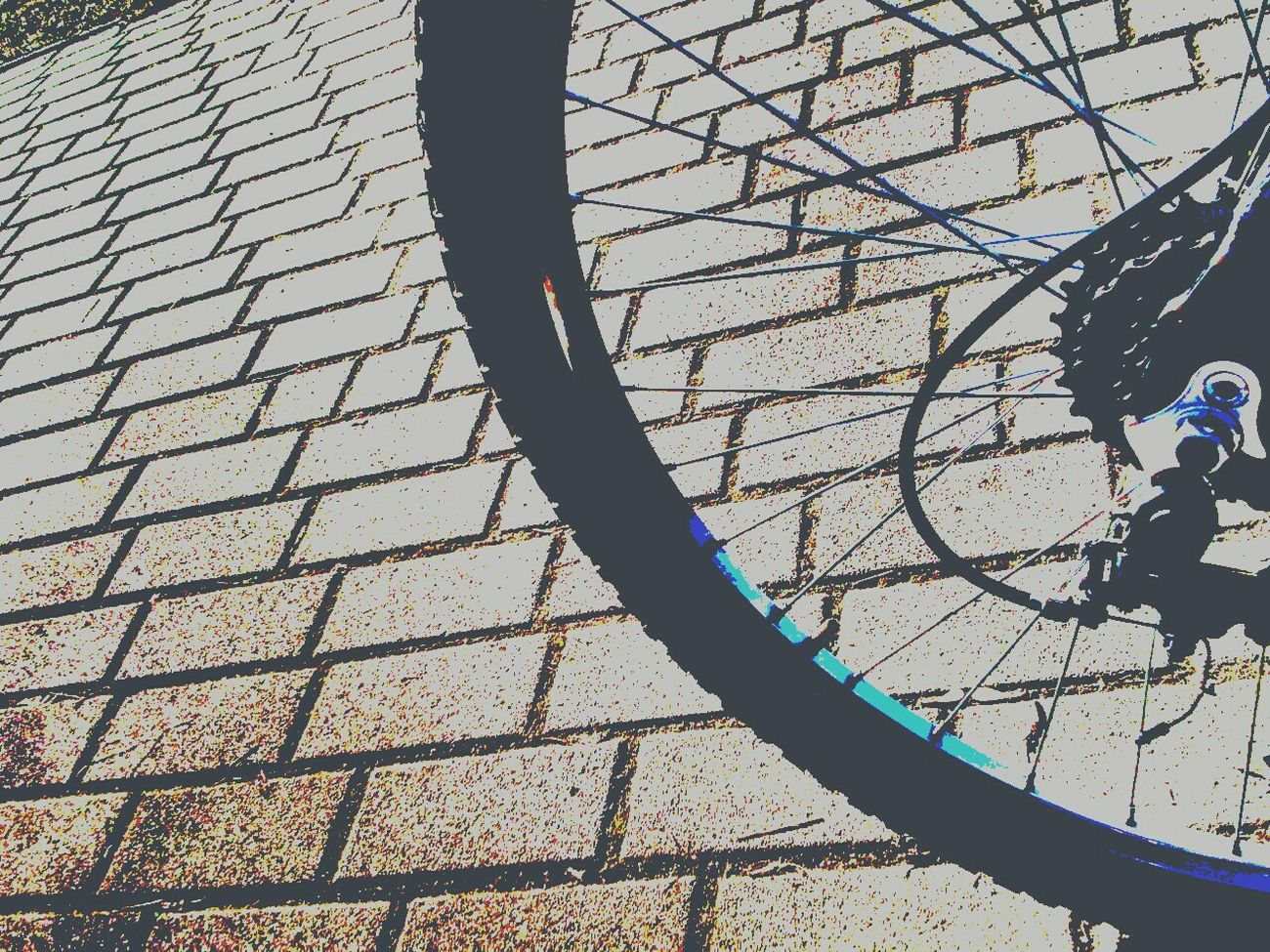 Bike Bike Wheel Excercising Biking Little Break Polarized Effect Eyeem Biker