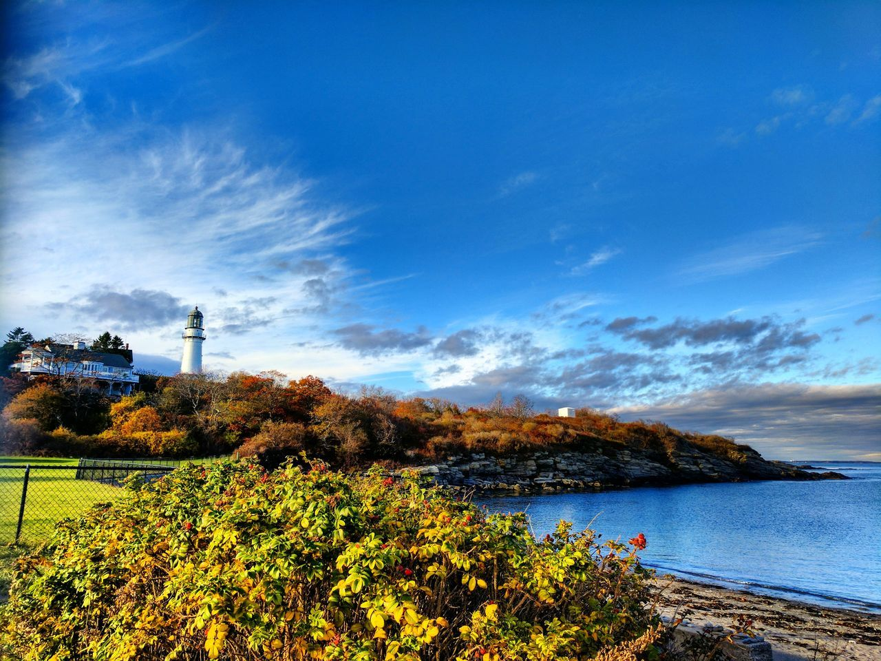 Taking in the sea breeze at Cape Elizabeth. Sky Nature Beauty In Nature Blue Growth Plant Scenics Outdoors Tranquility No People Cloud - Sky Travel Destinations Water Tranquil Scene Vacations Day Nature Landscape Peaceful Relaxing Cape Elizabeth Lighthouse Me Maine Cape Elzabeth Lighthouse