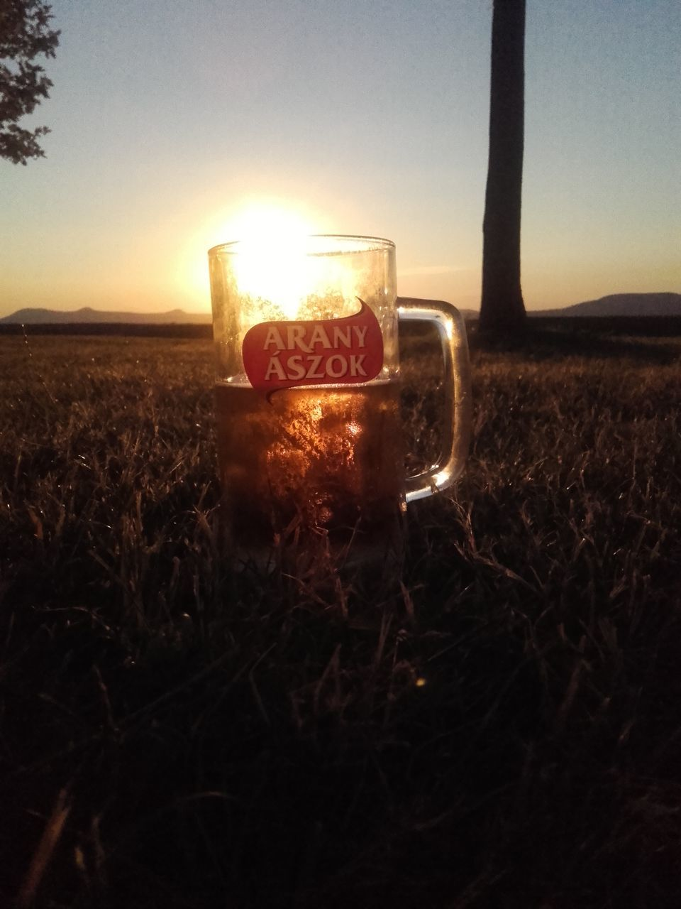 drink, field, nature, food and drink, text, refreshment, landscape, beauty in nature, sunset, outdoors, growth, freshness, sky, no people, grass, close-up, day