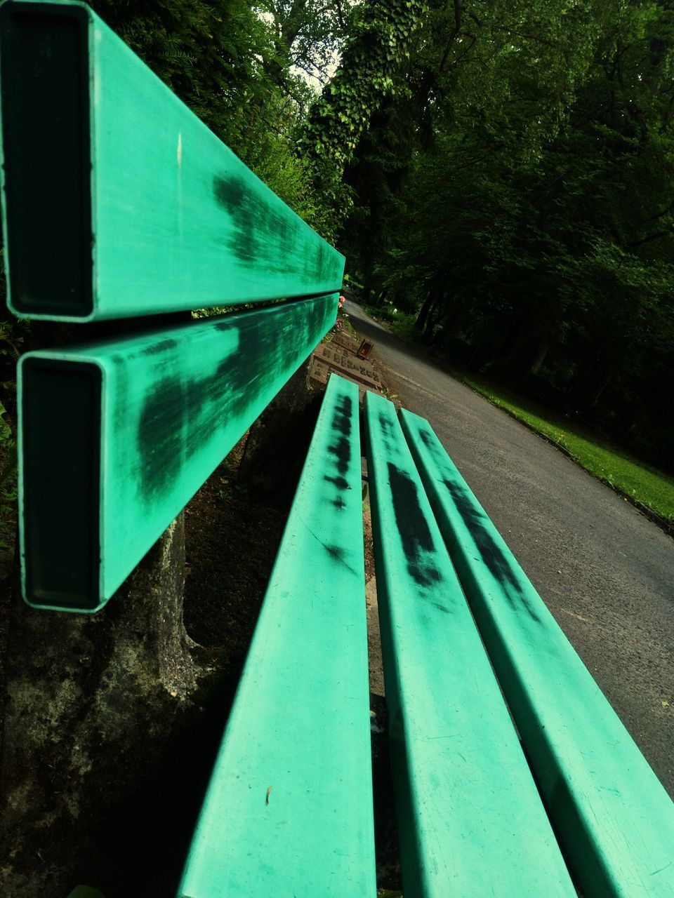 green color, day, no people, transportation, tree, outdoors, close-up, nature