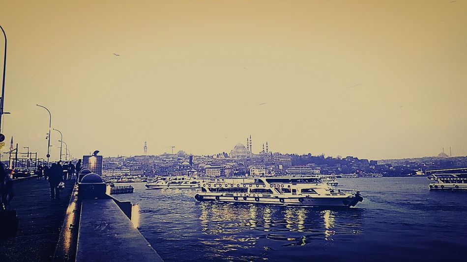 Sunset Bird Sky Water Flying Large Group Of Animals Flock Of Birds Outdoors Nautical Vessel Nature Beauty In Nature Sea Animals In The Wild No People Sailboat Day İstanbul Eminönü/ İstanbul Türkiye